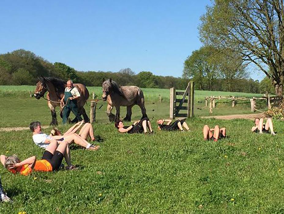 fst-bootcamp-training-paard
